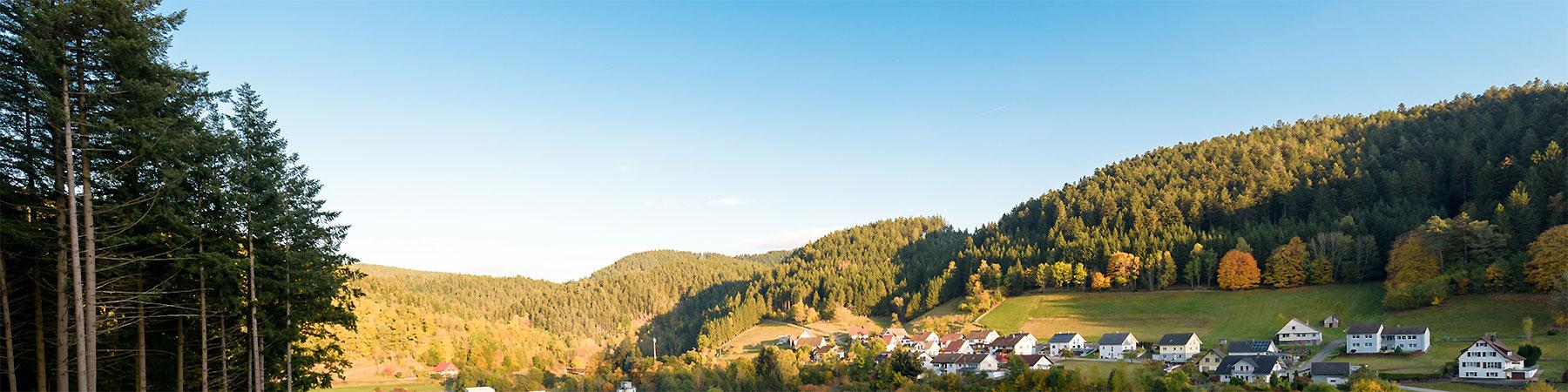 Schwarzwald Schenkenzell Landschaft